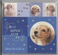 「Always Dog & Cat」