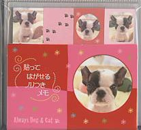 「Always Dog & Cat」