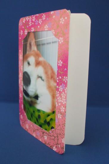 L判写真をセットできるフォトフレームスタントとしおりカードのセットです。