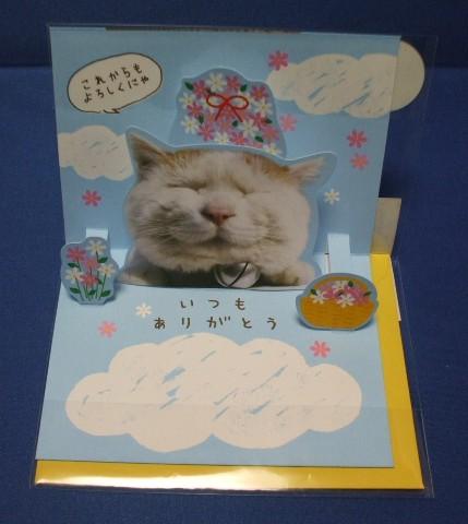【E30-852】かご猫・感謝(よろしくにゃ) 商品詳細紹介・注文のページへ進む