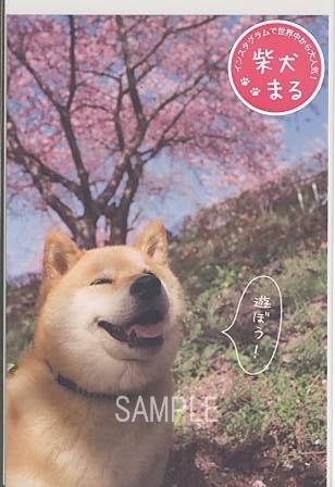インスタグラムで大人気の「柴犬まる」のポストカード