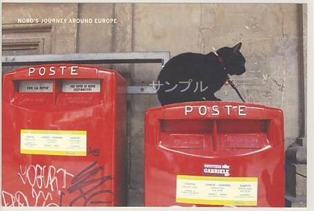 旅猫ノロ・ポストカード