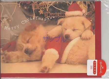 「サンタの装いの犬のクリスマスカード」商品詳細紹介・注文のページへ進む