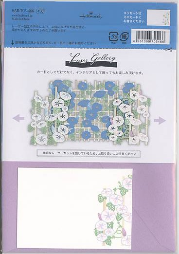 付属メッセージカードと解説書の画像