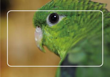 L判写真とフレーム枠とのイメージ