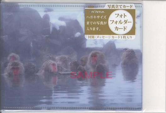 クリアファイルの素材で出来ているフォトフォルダーカード(地獄谷温泉に入っているサル)